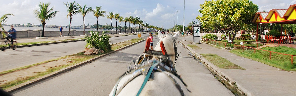 View from a horse drawn carriage of the city of Cienfuegos' malecón seawall. Historic Cienfuegos is the capital of Cienfuegos province located in central Cuba.